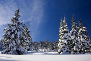 snow-1902052__340
